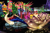 Festival lanternes