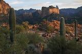 Arizona TontoNationalForest 4
