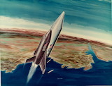 Space shuttle program 118