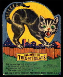 Halloween Trix Cat