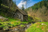 Mill-black-forest-bach-water
