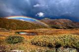 Harshland Rainbow