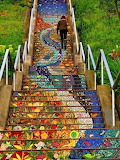The 16th Ave Tiled Steps, San Fransisco, Ca.