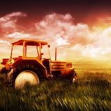 ~Sunset on the Farm~
