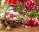 Tulips, Easter, eggs, basket, petals, feather, flowers