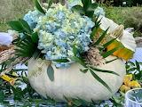 ^ Pumpkin Hydrangea Centerpiece