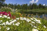 Summer Estonia - Photo id-4808780 Pixabay by Erik Karits