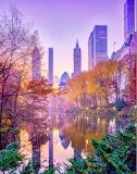 Central Park Fall Sunrise