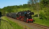 Tren Grass 540059