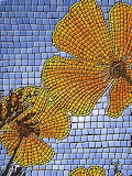 California poppy mosaic