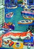 Le chat au Venice