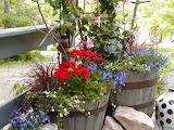 Springtime flowers on deck
