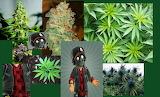 dankenstyne loves everything green
