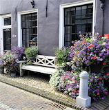 Bench at no. 32 Elburg Netherland