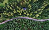 Droga przez las z lotu ptaka