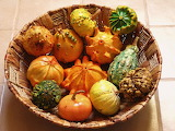 #Decorative Squashes