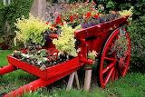 #Wonderful Cart Flower Garden