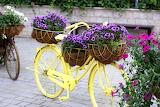 Bike floral bike 1235960