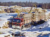 1987 Volvo F12 6x4 Timber Truck