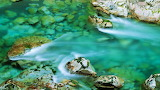 #Clear Water Over Mossy Rocks
