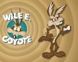 Tv-show-looney-tunes-coyote-