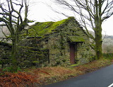Mossy Stone Shack