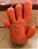 Carrot Hand
