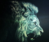 #Abstract Lion