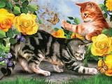 Kitten Play by Howard Robinson