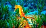 ^ Seahorse