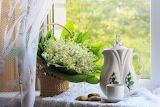 still life, flowers