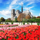 Stock-photo-notre-dame-cathedral-paris-france