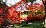 Mt Takao cable car in autumn