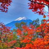 Perfect Autumn, Japan...
