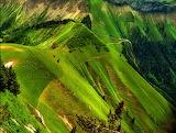 Green Alps