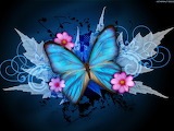 Blue-butterfly-wallpaper-9150-hd-wallpapers