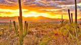 Arizona - Heat