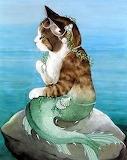 Mermaid Kitty