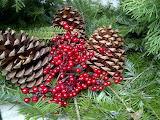 ^ Pine cones, Nandina berries