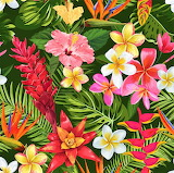 #Tropical Flowers