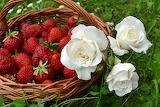 Strawberries-2386610 960 720