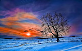 beautiful-winter-widescreen-wallpaper
