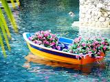 A boat full of flowers