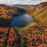 Newfoundland Autumn