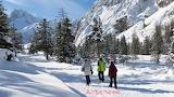 Winterse-wandeling-over-besneeuwde-wandelrouteskopie