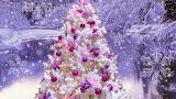 ChristmasWP4