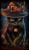 Kajenna Art 'Black Cat'