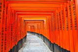 Fushimi-Inari-Shrine,-Japan