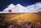 Mountains--@doll28