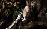 The Hobbit - Unexpected Journey 6